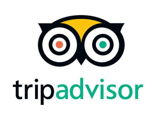 97% of Businesses on TripAdvisor worry about Online Reputation Management